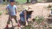 Waldorf Early Childhood Education: Real Life Activities